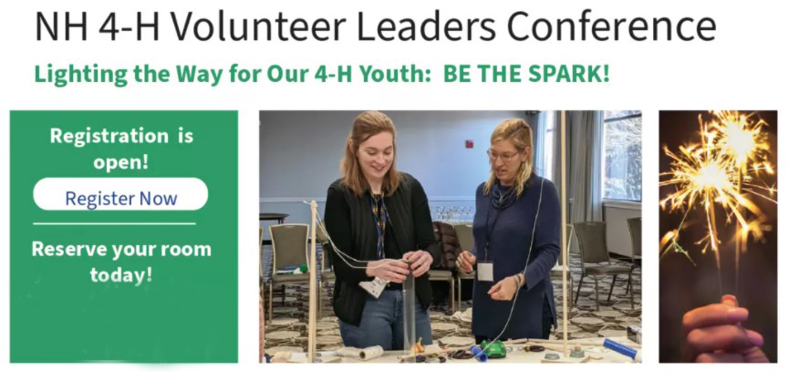 NH 4-H Volunteer Leaders Conference 2021