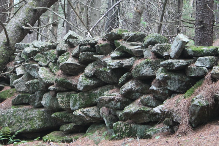 NH Stone Wall Mapper Training | Level 3 - Field Verification