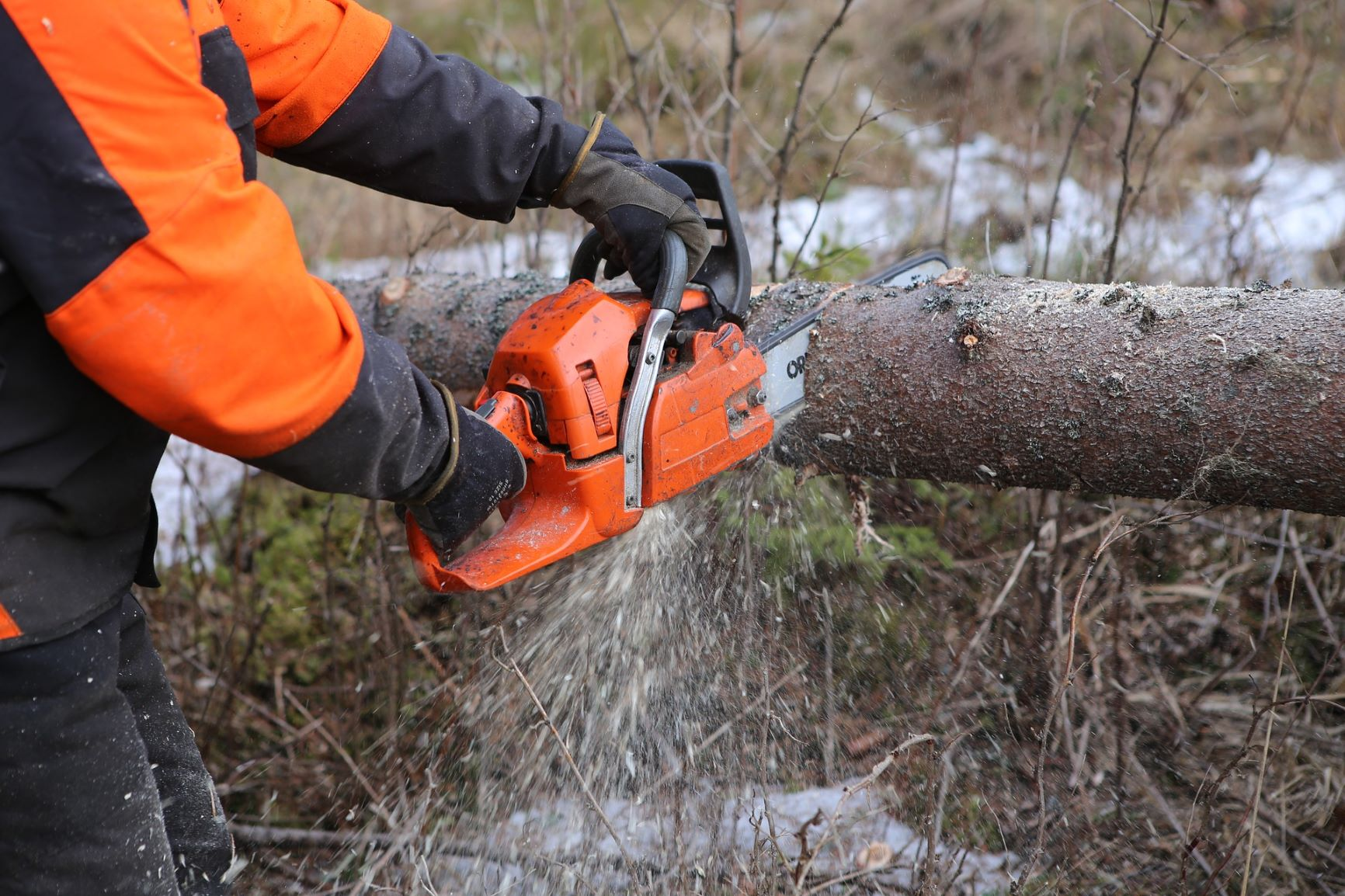 Chainsaw Safety Training for Landowners