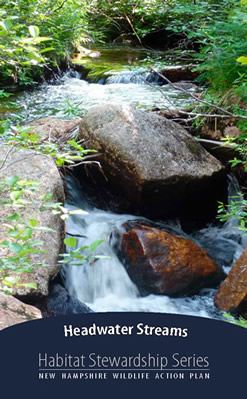 Headwater streams cover